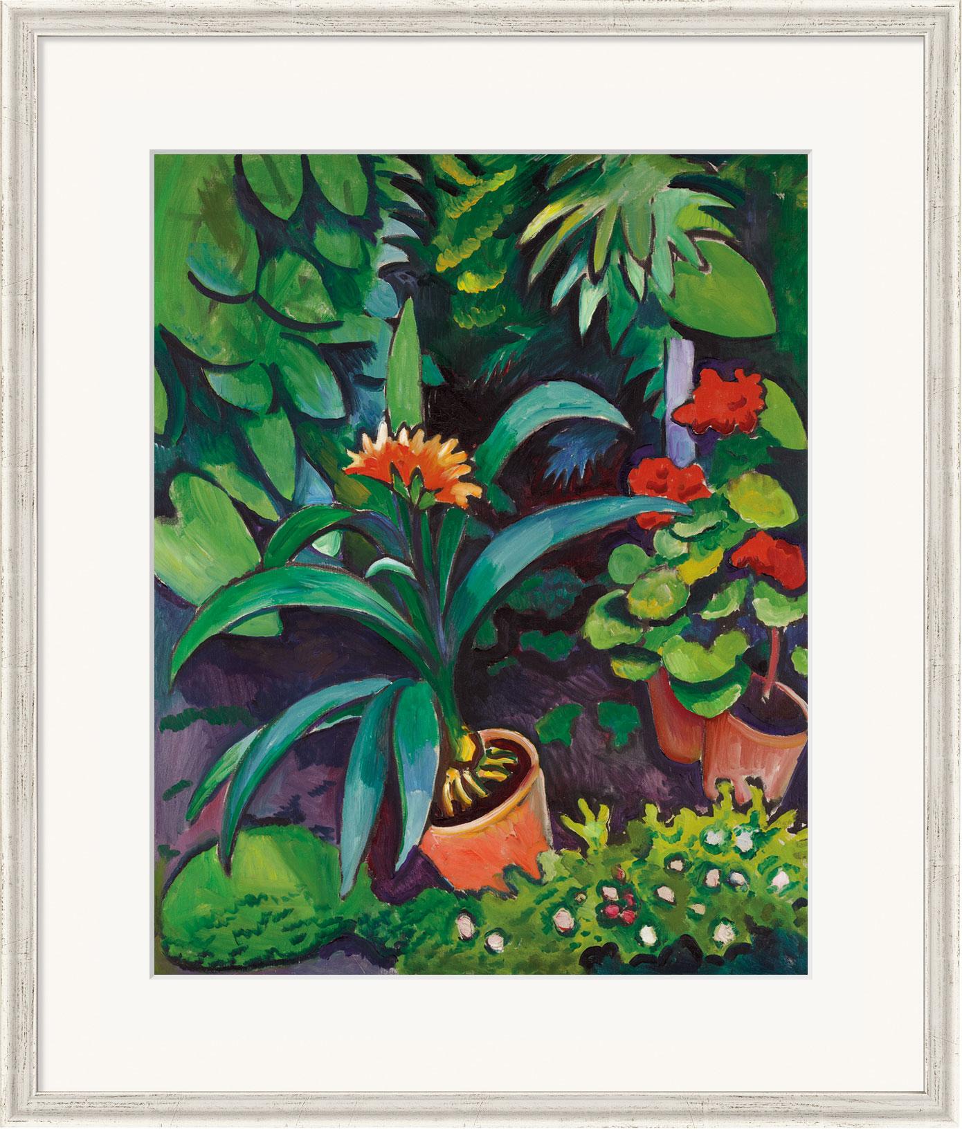 """Bild """"Blumen im Garten, Clivia und Pelargonien"""" (1911), gerahmt"""