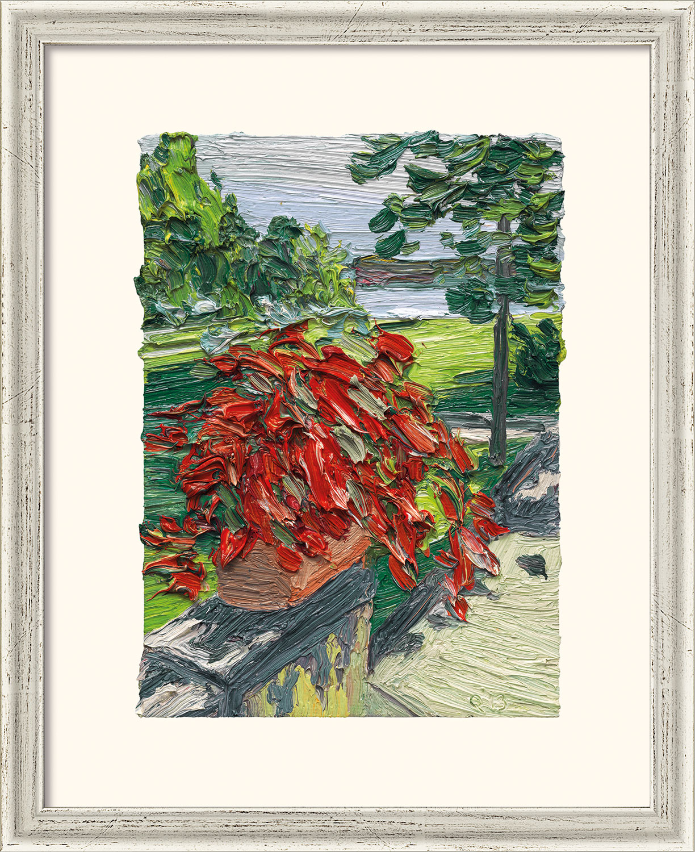 """Bild """"Garten Villa Liebermann V"""" (2014), gerahmt"""