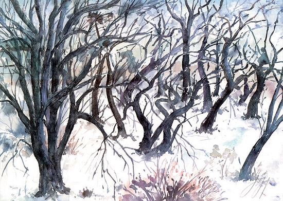 """Bild """"Baumlandschaft im Winter"""", ungerahmt"""