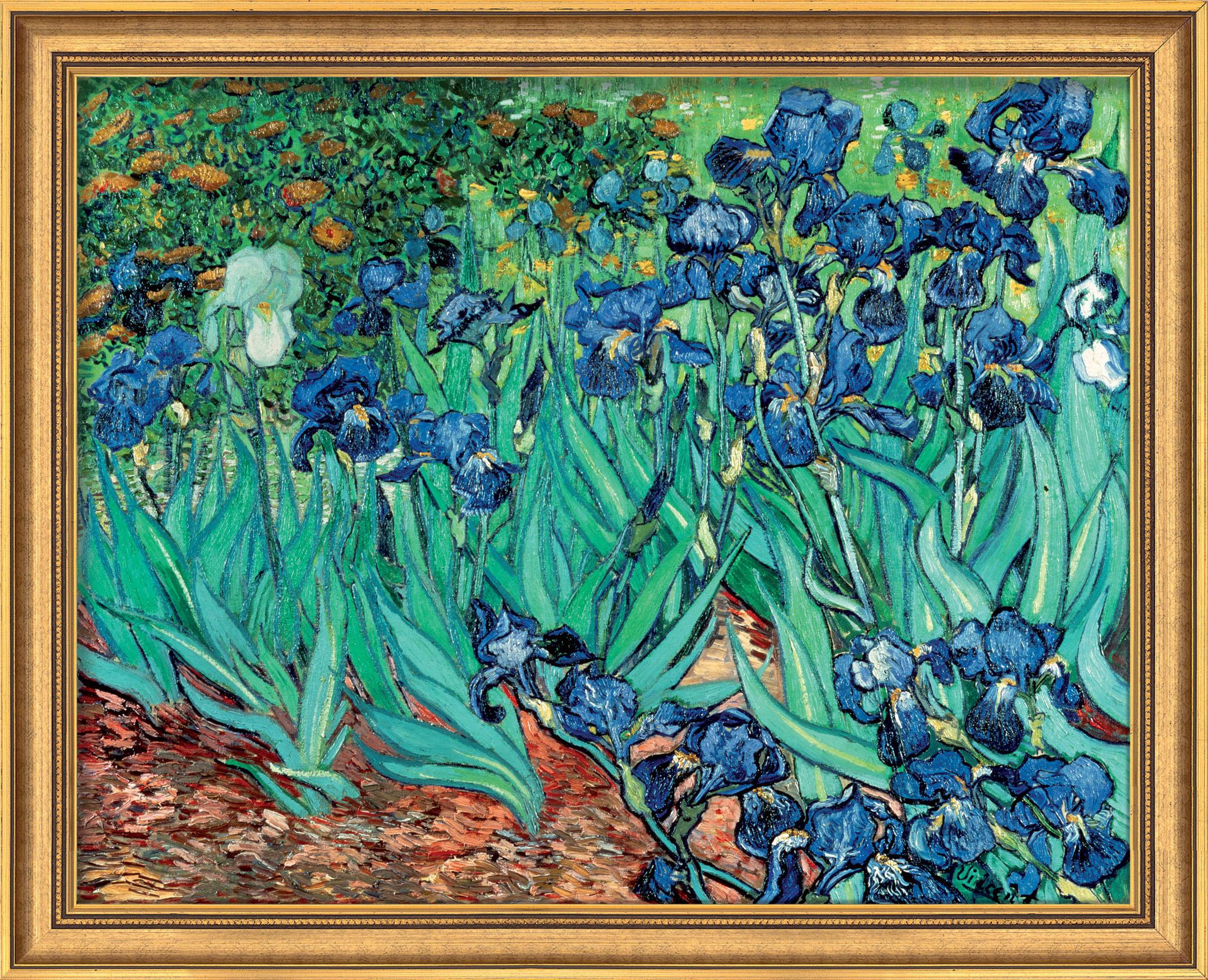Vincent van Gogh: Bild 'Iris (Schwertlilien)' (1889), gerahmt