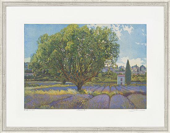 """Bild """"Provence III"""", gerahmt"""