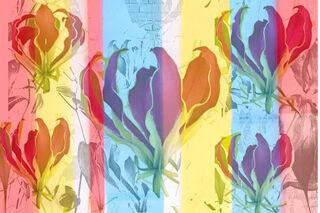 "Bild ""Transparency, Window and flowers 11c"" (2013)"