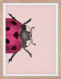 """Bild """"Ladybug I (groß)"""" (2017)"""