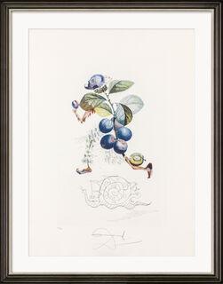 "Bild ""Prunier hâtif"" (1969)"