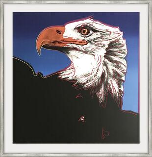 "Bild ""Bald Eagle (FS II.296)"" (1983)"