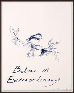 """Bild """"Believe in Extraordinary"""" (2014)"""