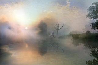 "Bild ""Silent Rise"" (2009), auf Keilrahmen"