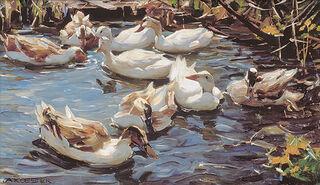"""Bild """"Neun Enten im Vorfrühling"""", auf Keilrahmen"""