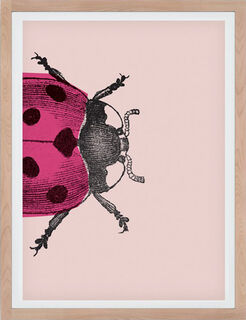 "Bild ""Ladybug I (klein)"" (2017)"