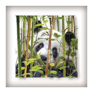 """Bild """"Panda"""" (2018)"""