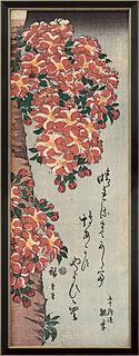 "Bild ""Double Cherry in Flower"", gerahmt"