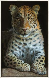 "Bild ""Leopard"", gerahmt"