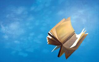 """Bild """"Das fliegende Buch"""", auf Keilrahmen"""